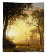 Light In The Forest Fleece Blanket
