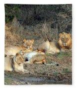 Lion Pride Fleece Blanket