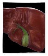 Liver And Gallbladder Fleece Blanket