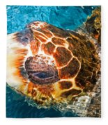 Loggerhead Sea Turtle Fleece Blanket