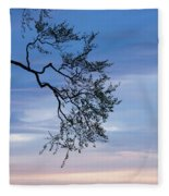 Low Angle View Of Tree At Dawn, Dark Fleece Blanket