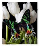 Madagascar Butterfly Fleece Blanket
