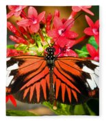 Madeira Butterfly Fleece Blanket