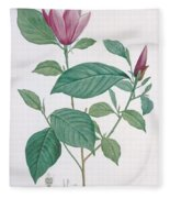 Magnolia Discolor, Engraved By Legrand Fleece Blanket