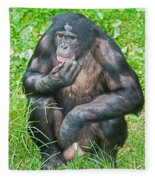 Male Bonobo Fleece Blanket