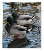 Mallard Drakes  Fleece Blanket