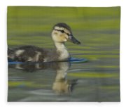 Mallard Duck Swimming In Marsh Pond Fleece Blanket