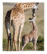 Masai Giraffe Giraffa Camelopardalis Fleece Blanket