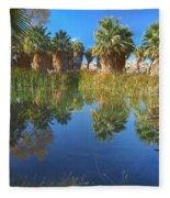 Mccallum Pond - Coachella Valley  Fleece Blanket