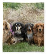 Miniature Long-haired Dachshunds Fleece Blanket