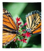 Monarch Danaus Plexippus Fleece Blanket
