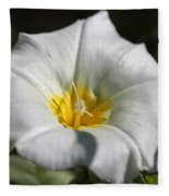 Morning Glory Named White Ensign Fleece Blanket