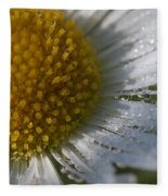 Mornings Dew Fleece Blanket