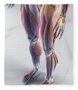 Muscles Of The Lower Body Fleece Blanket