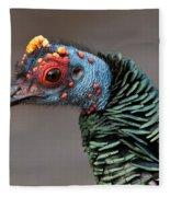 Ocellated Turkey Portrait Fleece Blanket