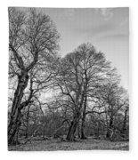 Old Trees Fleece Blanket