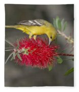 Orchard Oriole Fleece Blanket
