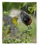 Orchard Orioles Fleece Blanket