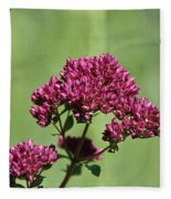 Oregano Fleece Blanket