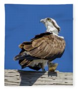 Osprey With Fish In Talons Fleece Blanket