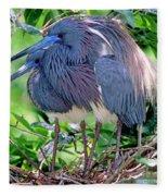 Pair Of Tricolored Heron At Nest Fleece Blanket