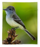 Pale-edged Flycatcher Fleece Blanket