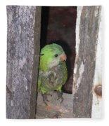 Parrot Fleece Blanket