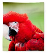 Parrot Fleece Blanket