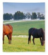 Pasture Fleece Blanket