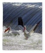 Pelican Drama Fleece Blanket