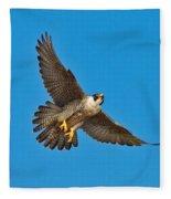Peregrine Falcon In Flight Fleece Blanket