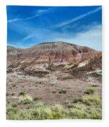 Petrified Forest National Park Fleece Blanket