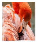 Pink Flamingo At A Zoo In Spring Fleece Blanket