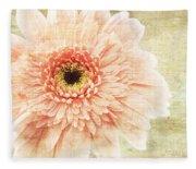 1 Pink Painterly Gerber Daisy Fleece Blanket