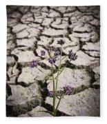 Plant Growing Through Dirt Crack During Drought   Fleece Blanket