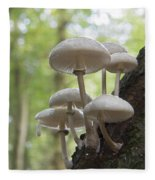 Porcelain Fungus Fleece Blanket