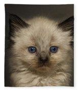 Precious Baby Kitty Fleece Blanket