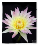 Pretty Pink And Yellow Water Lily Fleece Blanket