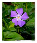 Pretty Purple Pinwheel Fleece Blanket