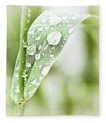 Raindrops On Grass Fleece Blanket