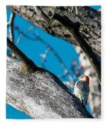 Red-bellied Woodpecker Fleece Blanket