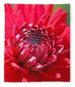 Red Dahlia Flower Fleece Blanket