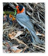 Red-faced Warbler At Nest With Young Fleece Blanket