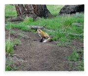 Red Fox In Yellowstone Fleece Blanket