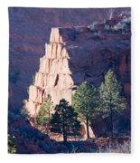 Red Rocks Open Space Fleece Blanket
