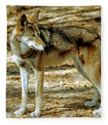 Red Wolf Fleece Blanket