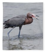 Reddish Egret Fleece Blanket