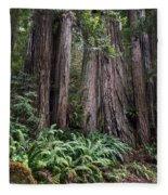 Redwood Fleece Blanket