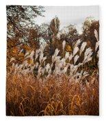 Reeds Highlighted By The Sun Fleece Blanket