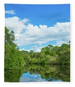 Reflection Of Trees And Clouds In South Fleece Blanket